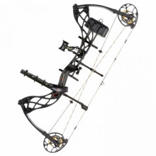 Блочный лук Bowtech Package RAK Carbon Icon